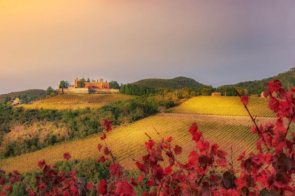 Castello di Brolio (SI)